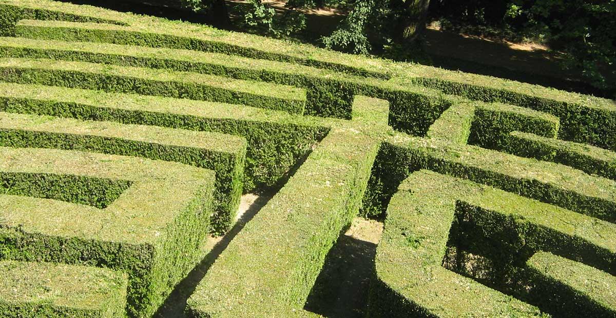 Un orgoglio tutto italiano: il labirinto della Masone è il più grande al mondo