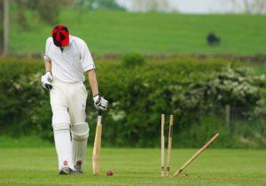 cricket-724616_640