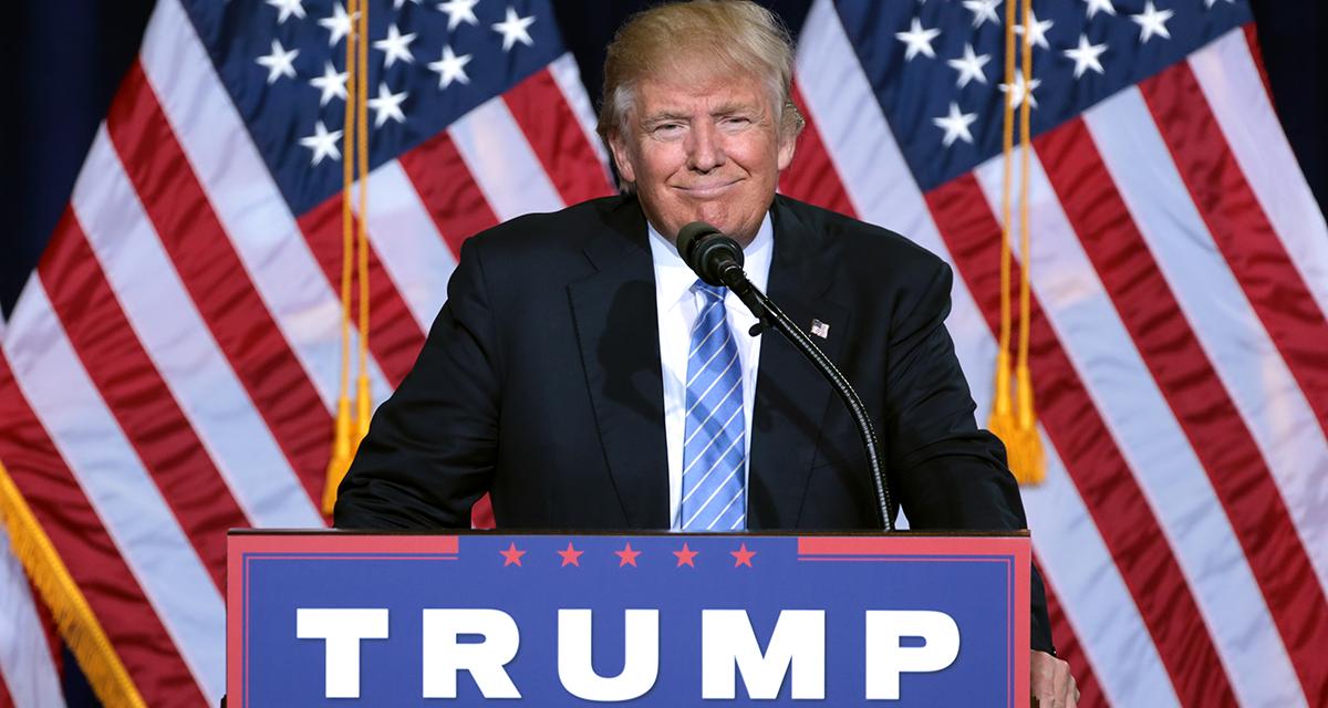 Trump Meme: i meme più divertenti sulla vittoria e le elezioni USA