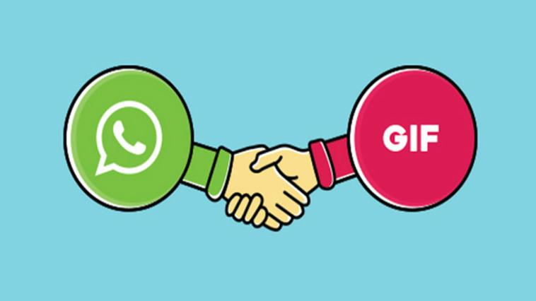 Whatsapp GIF, arriva la funzione per inviarle ai contatti