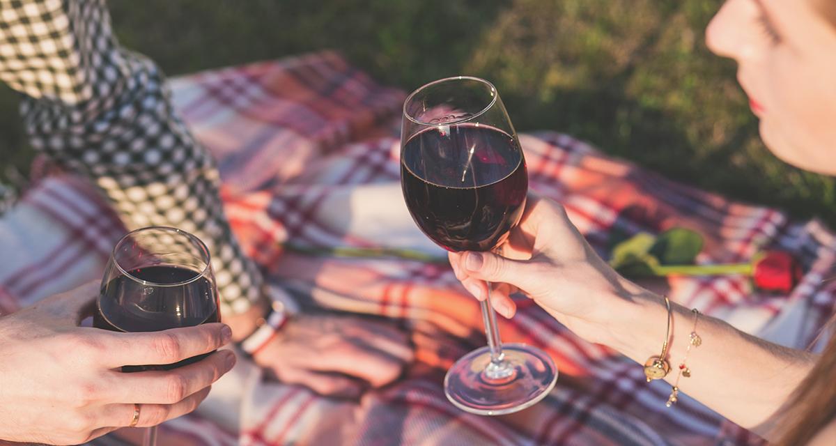 Slow Wine 2017: la guida con i migliori Vini italiani