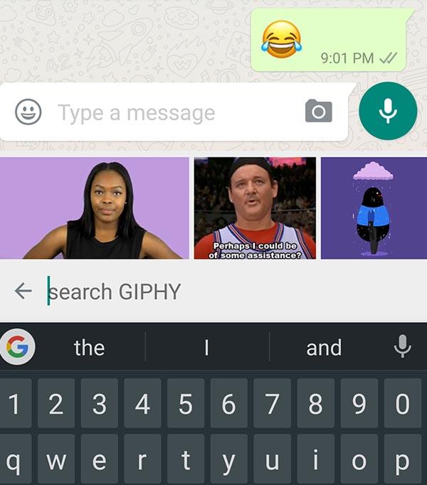Motore di ricerca Giphy, per le GIF su WhatsApp