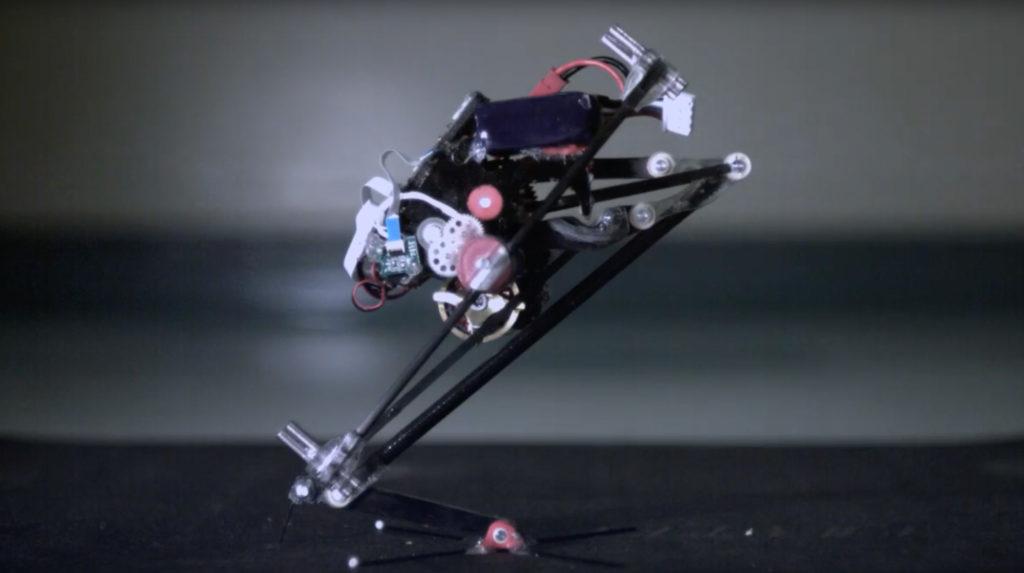 Il robot Salto