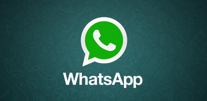 Whatsapp, nuovo aggiornamento. Integra il motore di ricerca Giphy in Android