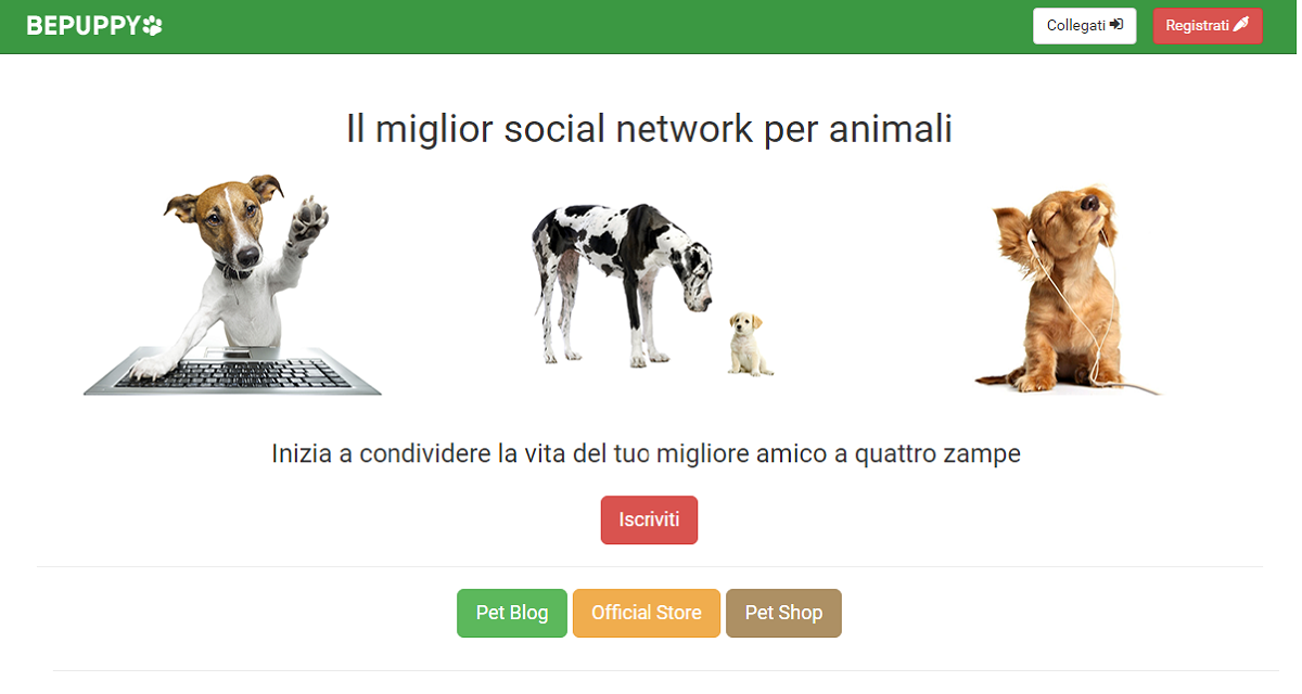 Social network per animali. Ecco l'italiano Bepuppy