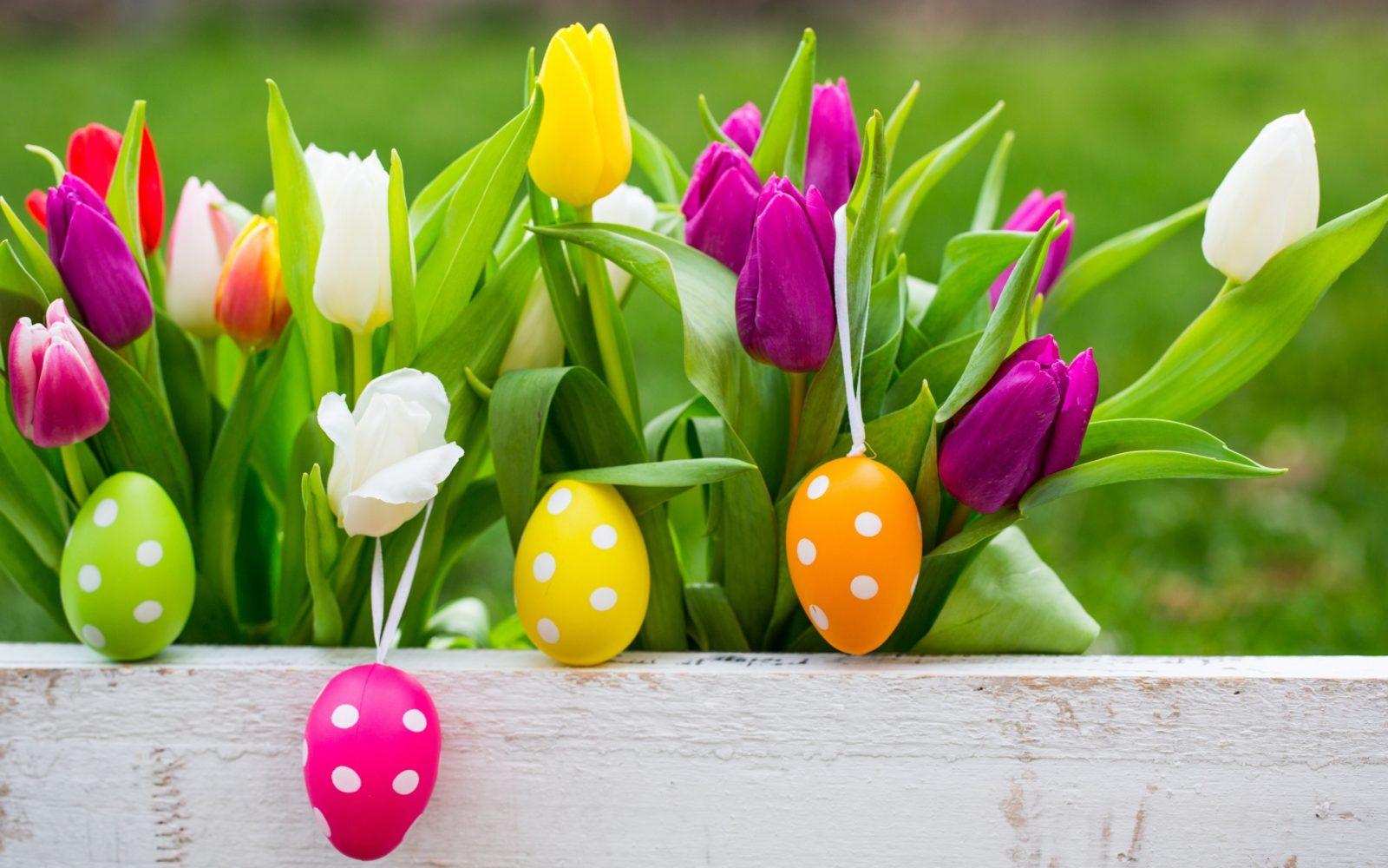 Immagini Buona Pasqua: 16 immagini di auguri da inviare l'1 Aprile 2018