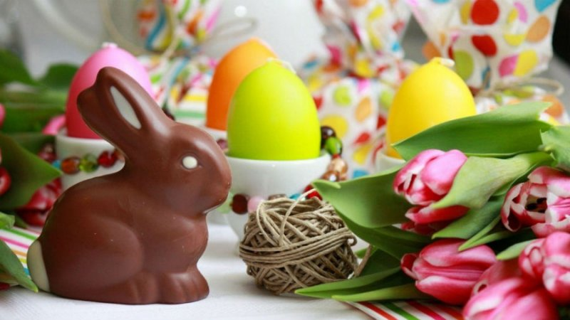 Coniglio di cioccolato Buona Pasqua