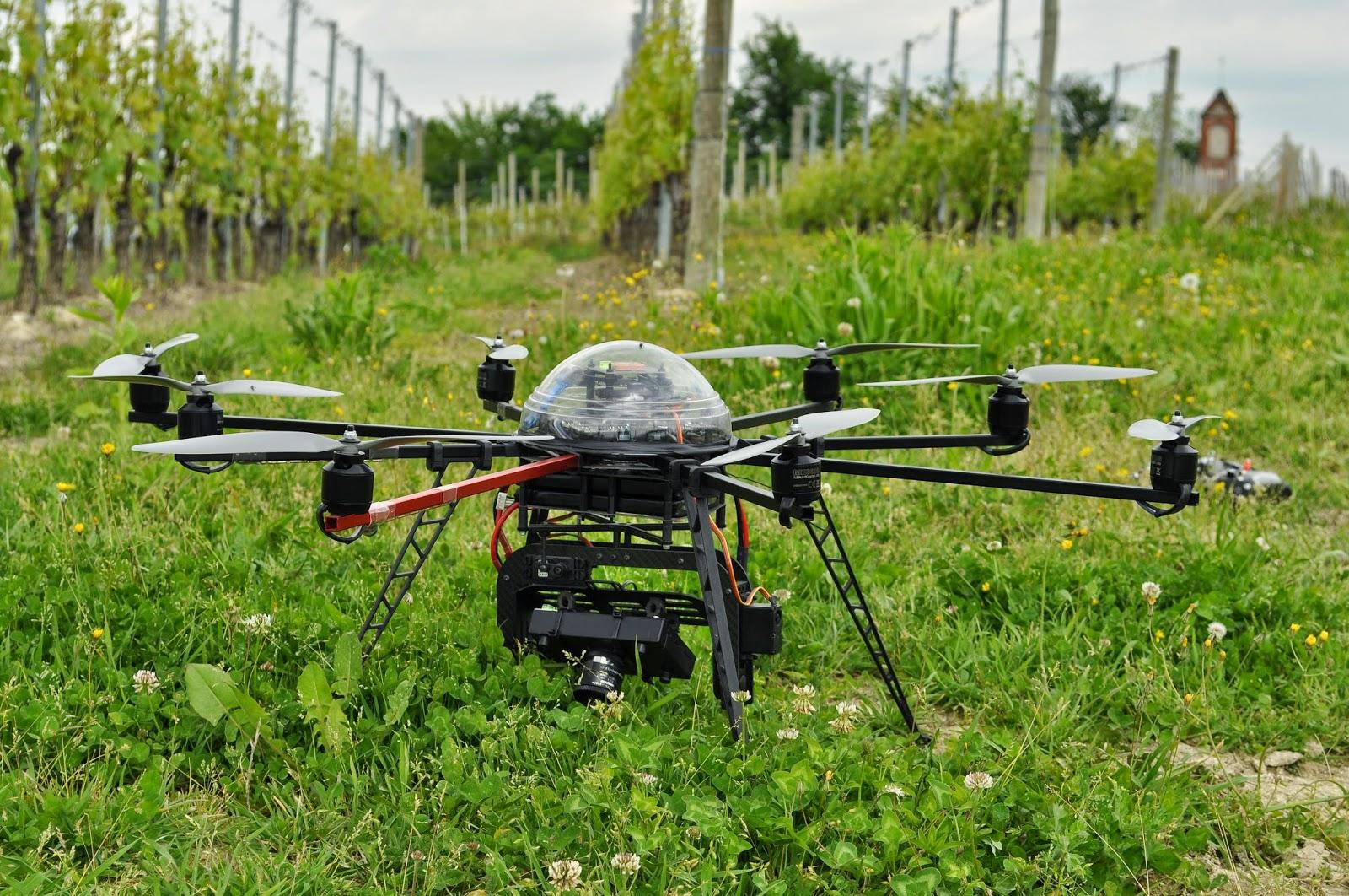 Phenodrone, il drone per la vendemmia