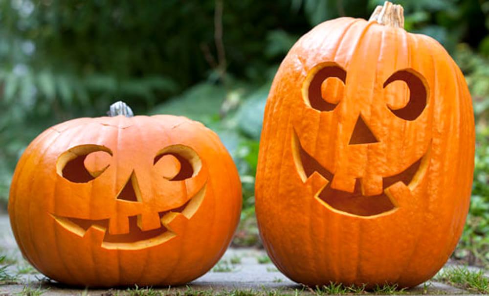 Auguri Halloween Immagini, 8 da mandare su WhatsApp da paura