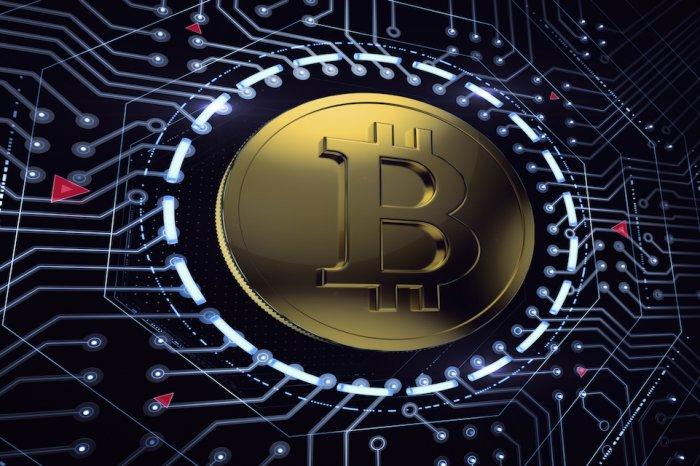 10 anni di Bitcoin, luce sul trend nell'infografica dell'Università Niccolò Cusano