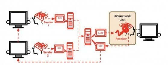 il Social Network dei cervelli